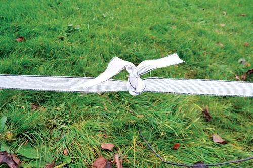 Horses suddenly escaping? It might be time to change your electric fence tape!