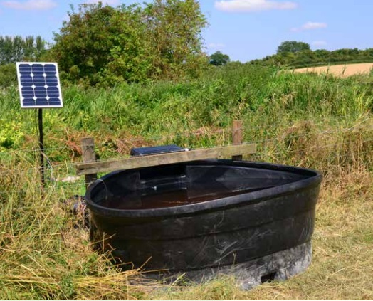 Water Pumps for your livestock - both solar and battery powered pumps