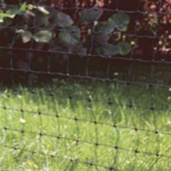 Extra Tall 25 Metre Electric Poultry Net in Green - keep your hens safe